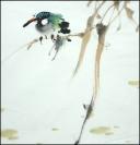 Yang qiaoling, Ink on Xuan Paper, Bird9, Size (40x40cm)2015